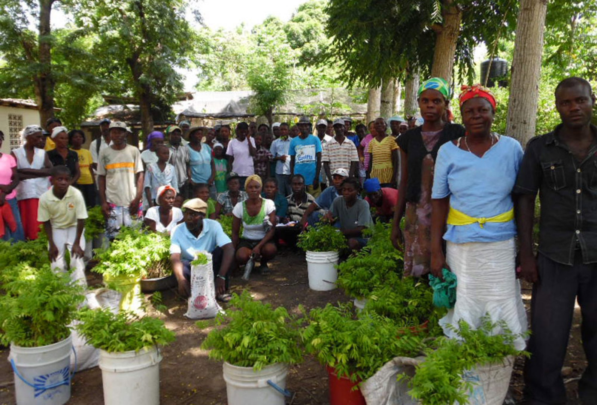 Haiti-Hilfe Falkenstein e. V.