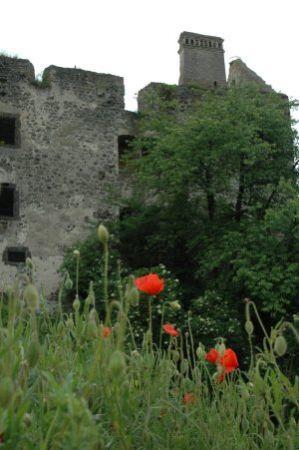 Ruine in Burkheim am Kaiserstuhl